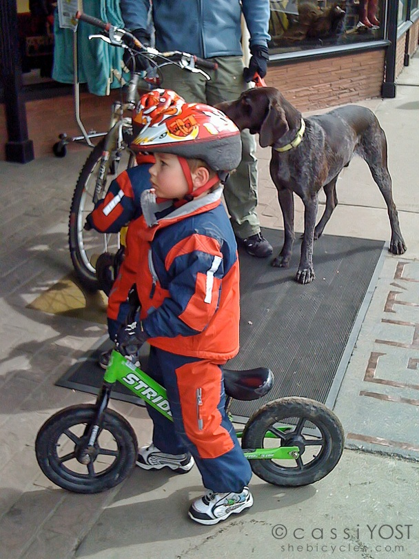 Dad, two tots and the dog - by bike; awesome!
