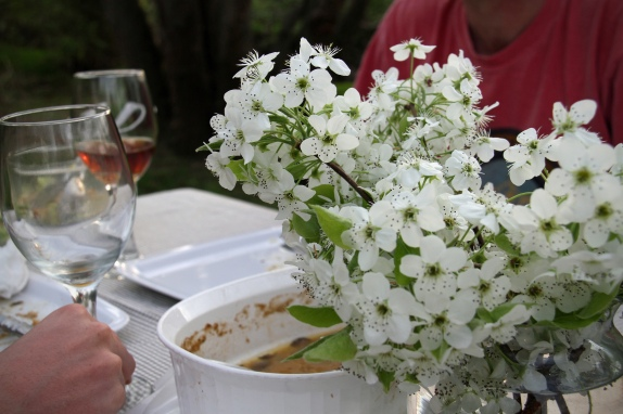 Springtime dinner by bicycle: divine